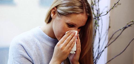 Allergi og inneklima | Allergiguiden